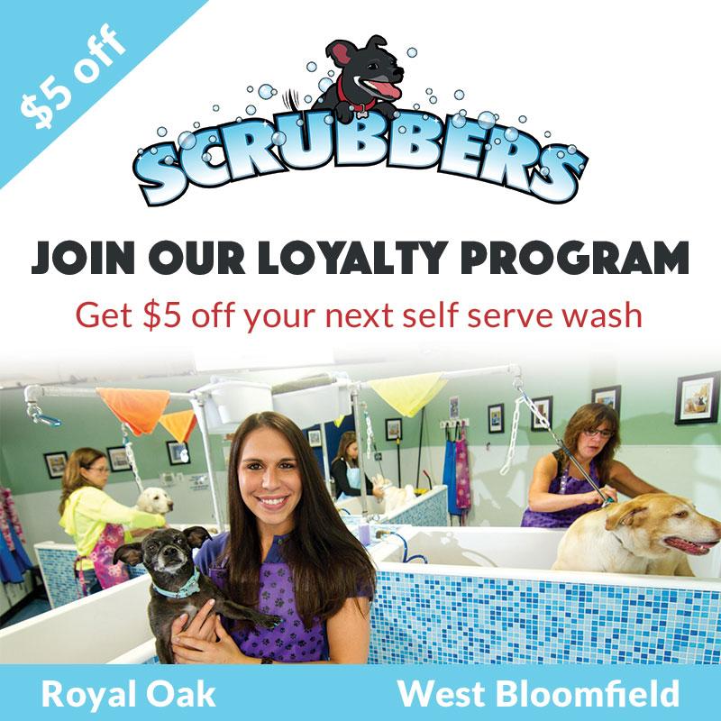 samplescrubbers
